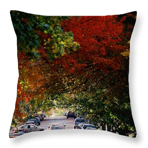 Fall Throw Pillow featuring the photograph Fall City St. Louis 1 by Monte Landis