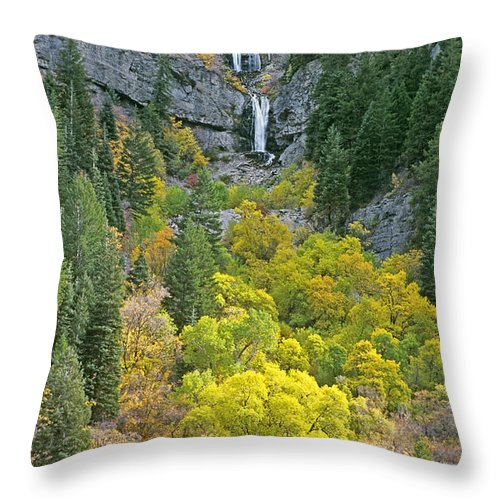 North America Throw Pillow featuring the photograph Fall Color And Waterfalls In Provo Canyon Utah by Dave Welling