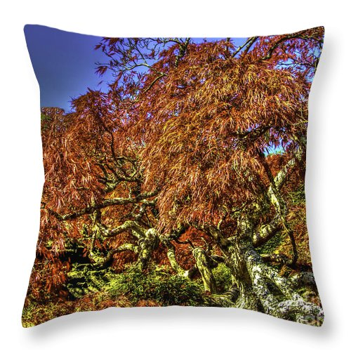 Fall Throw Pillow featuring the photograph Fall Color At Biltmore by Dale Powell