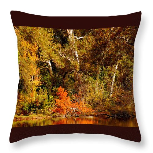 Creekside Fall Color Colors Leaves Trees One Mile Bidwell Park Chico Ca Throw Pillow featuring the photograph Fall Color Creekside by Holly Blunkall