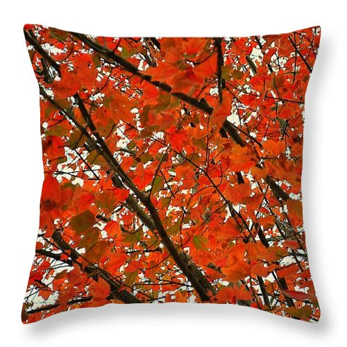 Leaves Throw Pillow featuring the photograph Fall Colors 2014-10 by Srinivasan Venkatarajan
