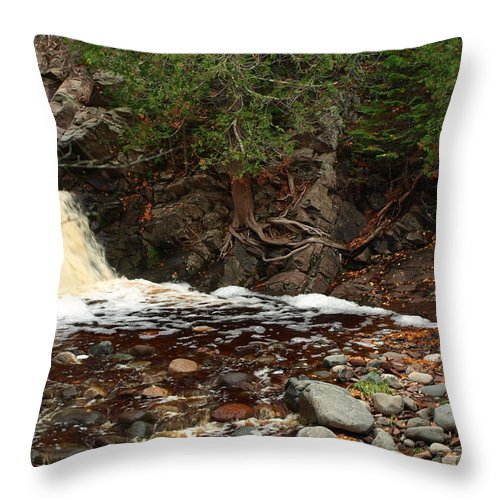 Nature Throw Pillow featuring the photograph Fall Creek by James Peterson