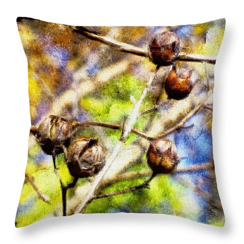 Fall Throw Pillow featuring the photograph Fall Crepe Myrtle by Melissa Bittinger