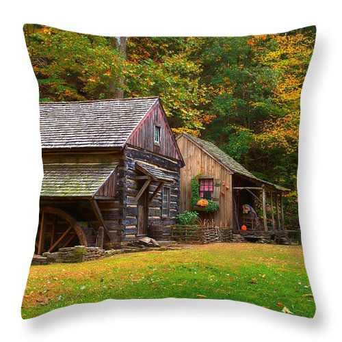 Farm Throw Pillow featuring the photograph Fall Down On The Farm by William Jobes