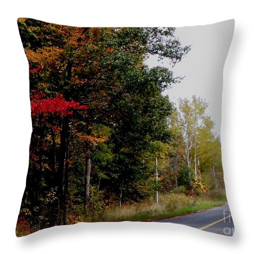 Fall Throw Pillow featuring the photograph Fall Drive Color Tour by Gail Matthews
