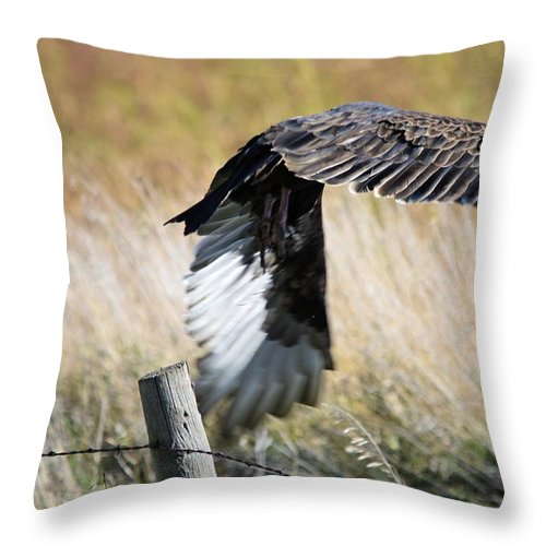 Vulture Throw Pillow featuring the photograph Fall Flight by Bonfire Photography