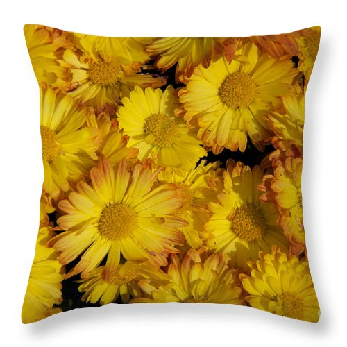 Fall Flowers Throw Pillow featuring the photograph Fall Flowers by June Hatleberg Photography