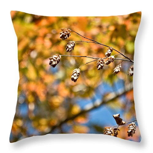 Throw Pillow featuring the photograph Fall Foliage by Cheryl Baxter