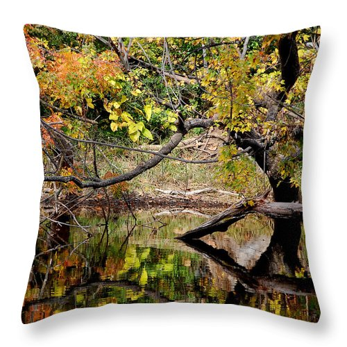 Fall Leaves Colors Branches Water One Mile Bidwell Park Chico Ca Throw Pillow featuring the photograph Fall From The Water by Holly Blunkall