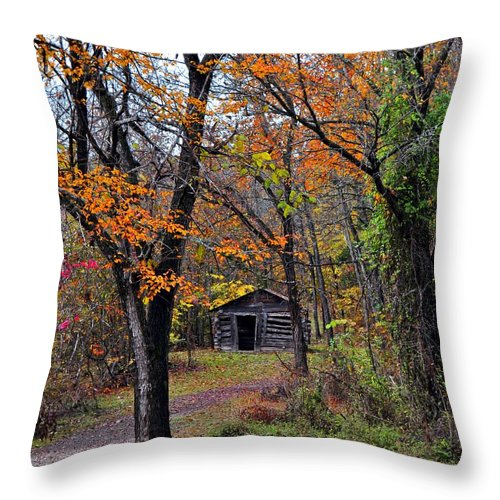 Fall Colors Throw Pillow featuring the photograph Fall Homestead by Marty Koch
