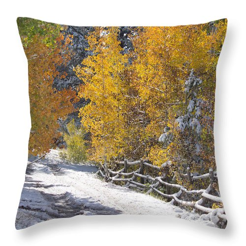 Autumn Throw Pillow featuring the photograph Fall Into Beartrap Meadow - Casper Mountain - Casper Wyoming by Diane Mintle