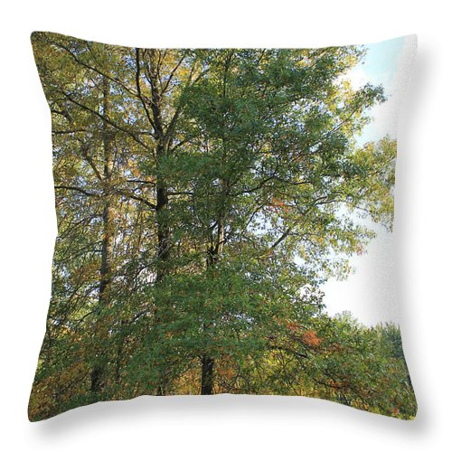 Fall Throw Pillow featuring the photograph Fall Just Getting A Start by Gerald Rader