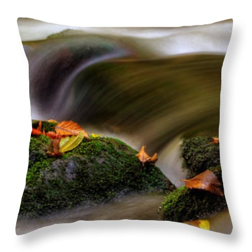 Fall Throw Pillow featuring the photograph Fall Leaves On Mossy Rocks by Greg Mimbs