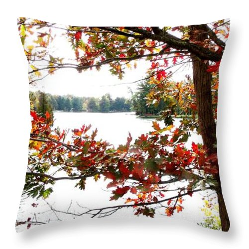 Fall Throw Pillow featuring the photograph Fall Paints A Picture by Gail Matthews
