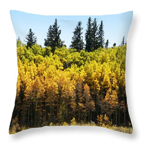 Colorful Throw Pillow featuring the photograph Fall Panorama by Marilyn Hunt