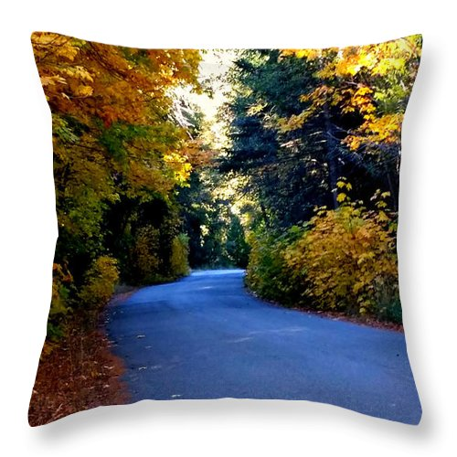 Tree Throw Pillow featuring the photograph Fall Path by Matthew Farmer
