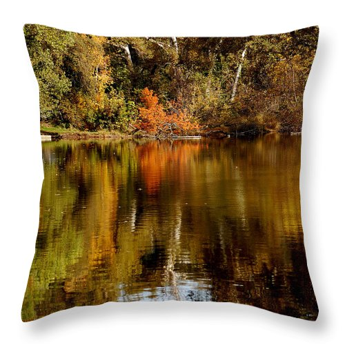 Fall Colors Leaves Water One Mile Park Bidwell Chico Ca Throw Pillow featuring the photograph Fall Reflections by Holly Blunkall