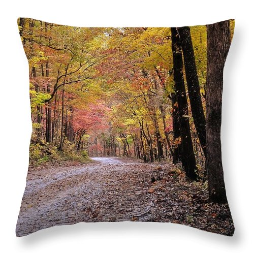 Fall Throw Pillow featuring the photograph Fall Road by Marty Koch
