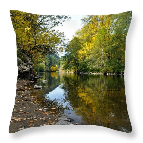 Water Throw Pillow featuring the photograph Fall Series 2 by Teri Schuster