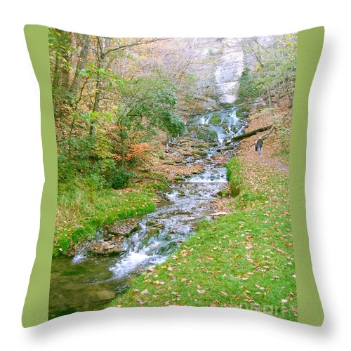 Springs Throw Pillow featuring the photograph Fall Springs by Minding My Visions by Adri and Ray