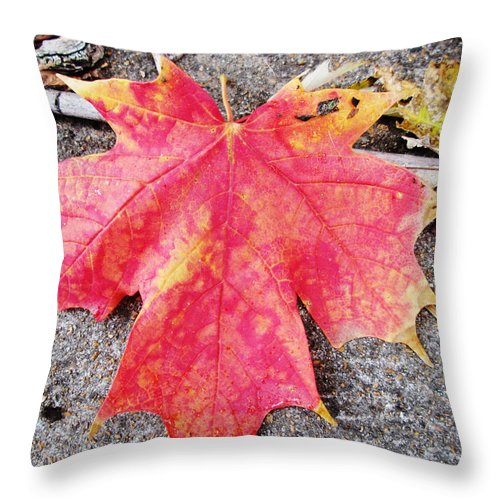 Fall Throw Pillow featuring the photograph Fall St. Louis 7 by Monte Landis