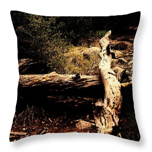 Nature Throw Pillow featuring the photograph Fallen Beauty by Jessica Shelton