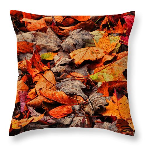 Autumn Throw Pillow featuring the photograph Fallen Colors by Randy Rogers