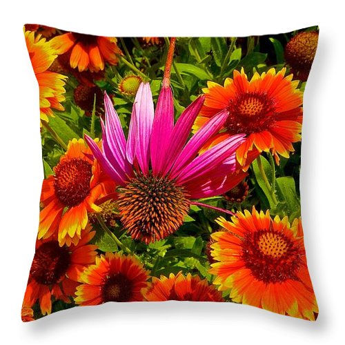 Garden Throw Pillow featuring the photograph Fallen Coneflower by Tim G Ross