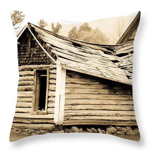 Cabin Throw Pillow featuring the photograph Fallen Homestead II by Athena Mckinzie