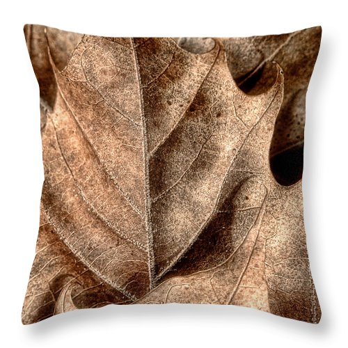 Leaf Throw Pillow featuring the photograph Fallen Leaves I by Tom Mc Nemar