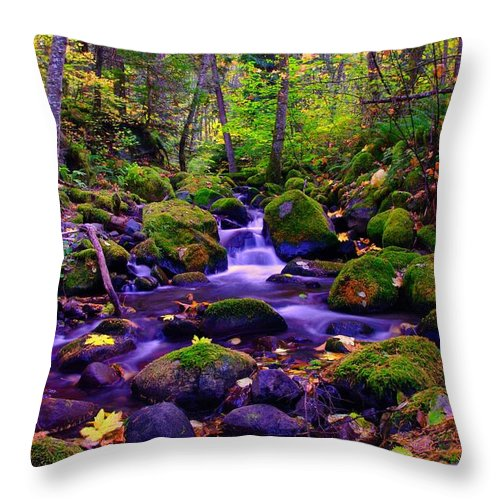 Rivers Throw Pillow featuring the photograph Fallen Leaves On The Rocks by Jeff Swan