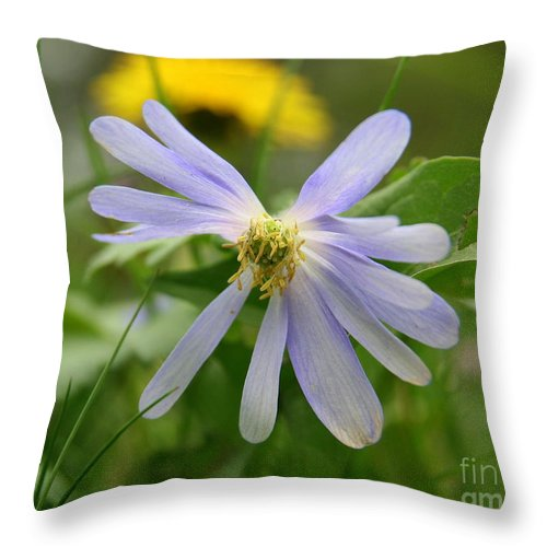 Flower Photography Throw Pillow featuring the photograph Fallen Petals by Neal Eslinger