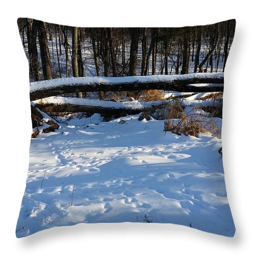 Landscape Throw Pillow featuring the photograph Fallen Tree Deertrails In Winter by Mark Victors