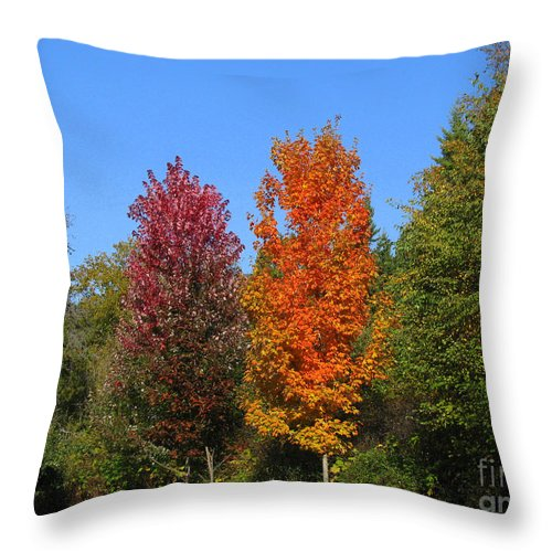 Fall Throw Pillow featuring the photograph Falls Colours by Leone Lund