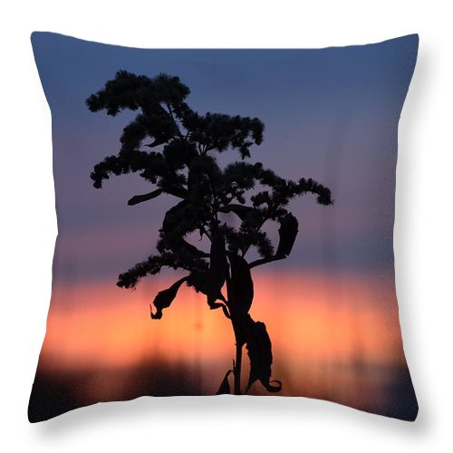 Plants Throw Pillow featuring the photograph Falls Dying Breath by James Petersen