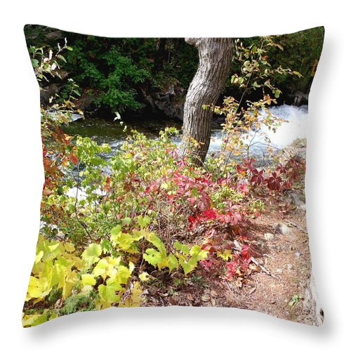 Fall Throw Pillow featuring the photograph Falls Fall View by Gail Matthews