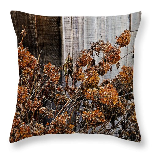 Flowers Throw Pillow featuring the photograph Fall's Fleeting Memories by Cathy Shiflett