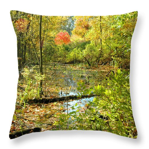 Leaves Throw Pillow featuring the photograph Fallscape by Trish Hale