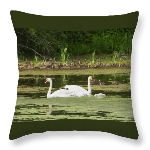 Swan Throw Pillow featuring the photograph Family Is Everything by Donna Doherty