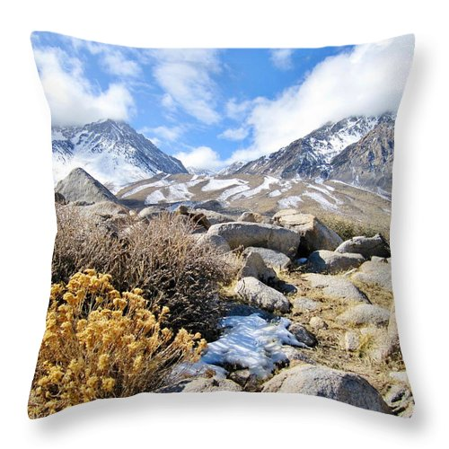 Sierra Throw Pillow featuring the photograph Fantasy by Marilyn Diaz