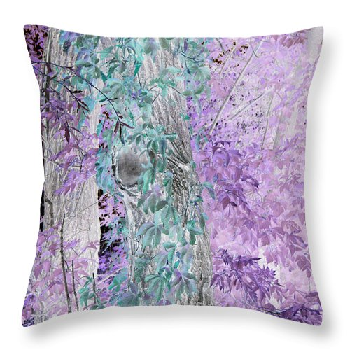 Jamie Lynn Gabrich Throw Pillow featuring the photograph Fanticy In Reality by Jamie Lynn