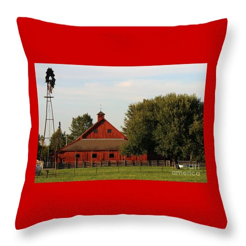Agriculture Throw Pillow featuring the photograph Farm-3582 by Gary Gingrich Galleries