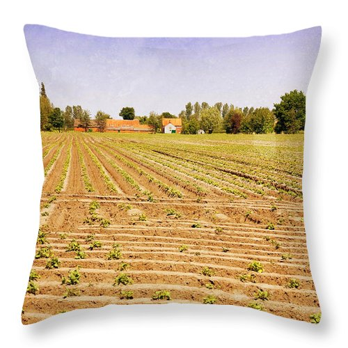 Texture Throw Pillow featuring the photograph Farm Landscape by Pati Photography