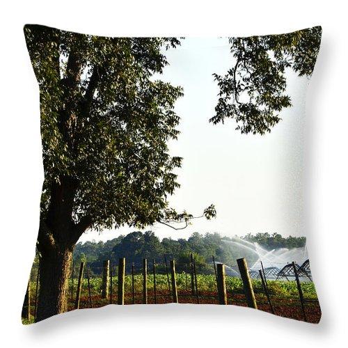 Farming Throw Pillow featuring the photograph Farm Life by Debra Johnson