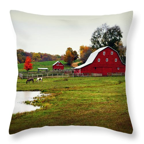 Barn Throw Pillow featuring the photograph Farm Perfect by Marty Koch