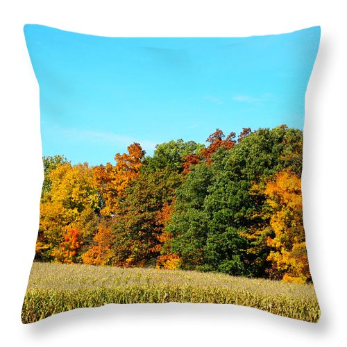 Autumn Leaves Photograph Throw Pillow featuring the photograph Farmfield Fall by Dan Sproul