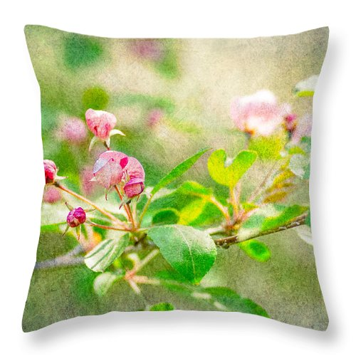 Flower Throw Pillow featuring the photograph Feast Of Life 20 - Morning Mists by Alexander Senin