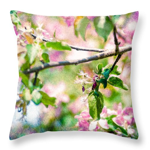 Flower Throw Pillow featuring the photograph Feast Of Life 22 - Apple - The Beginning by Alexander Senin
