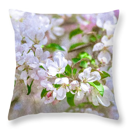 Flower Throw Pillow featuring the photograph Feast Of Life 23 - Spring Wreath by Alexander Senin