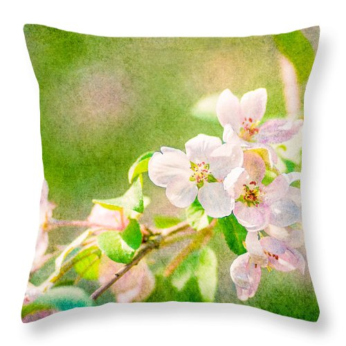 Flower Throw Pillow featuring the photograph Feast Of Life 24 - Delight by Alexander Senin